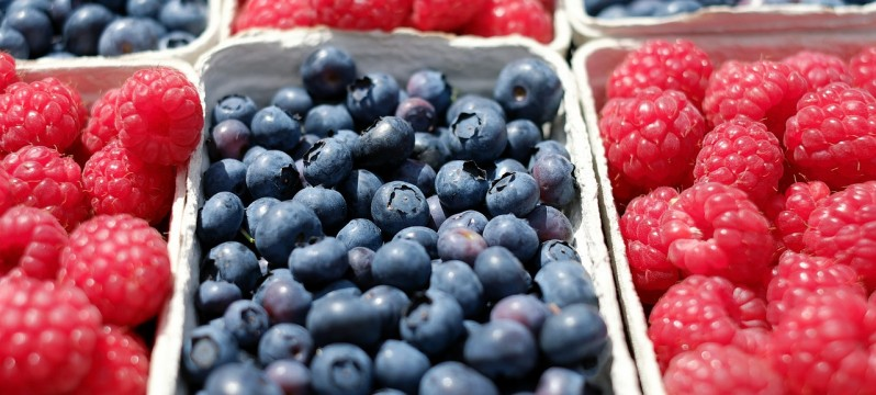 berries-1493905_1280
