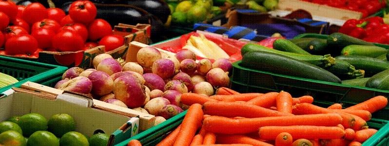 farmers markets 800x300
