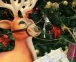 Christmas-Lincolnshire-Show