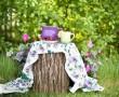 summer-783344_1280