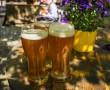 beer-1379581_1280