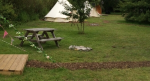 Crooked Willow Campsite