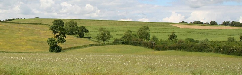 lincs countryside 800x250